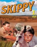 Skippy 1. - 5. dly - originln Australsk TV seril 5 DVD