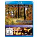 Adorable Autumn / Snugly Fireplace (Blu-ray)