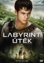 Labyrint: Útìk (DVD)